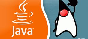 Core Java, SQL, Unix, Software Development Practices